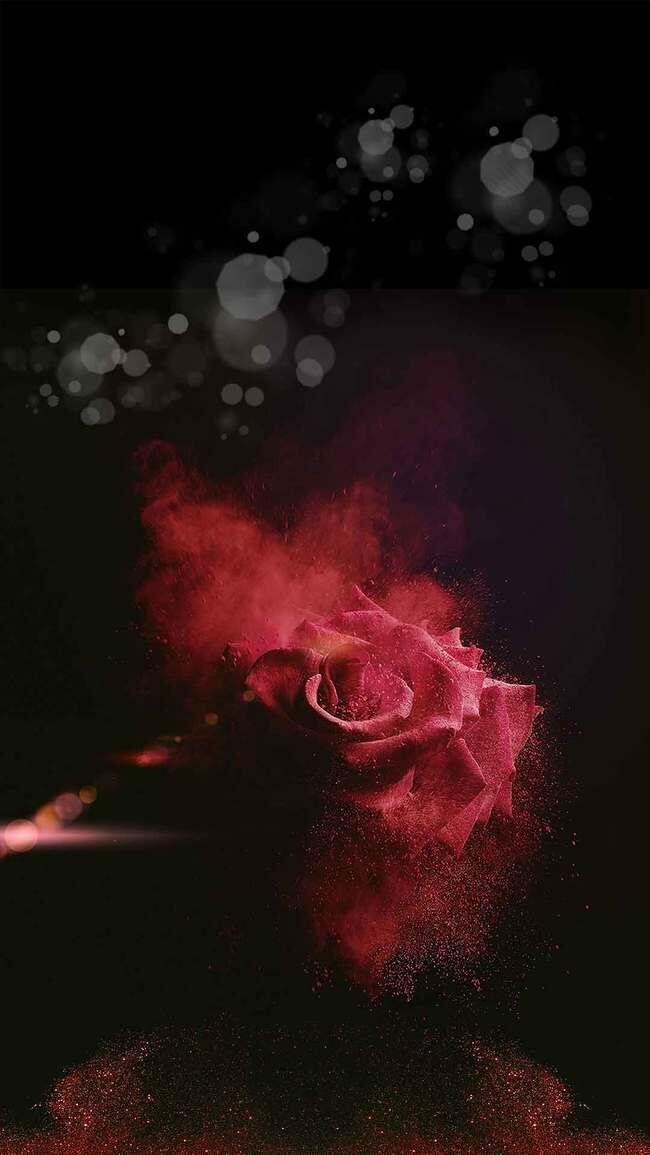 整形瘦身玫瑰花金沙H5背景素材