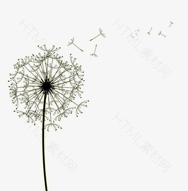 蒲公英漂浮花瓣气泡简洁大方树叶