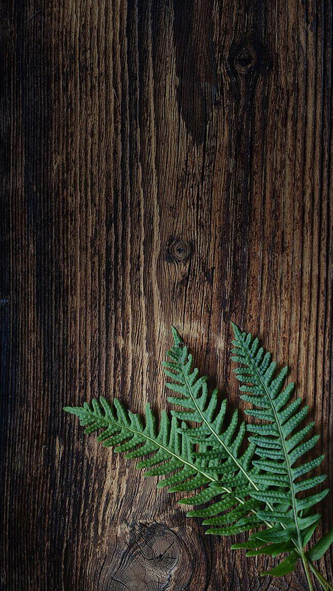 木板木纹树叶H5背景