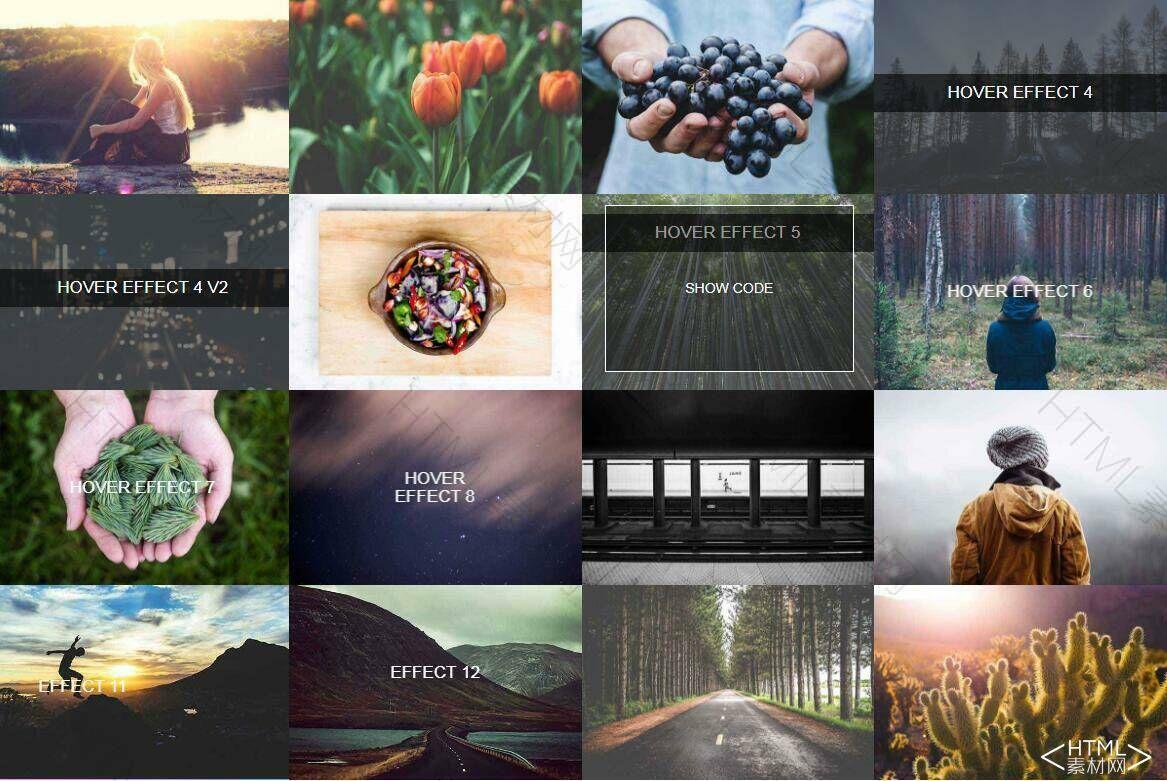 16种图片鼠标滑过加载文字hover特效代码下载.jpg