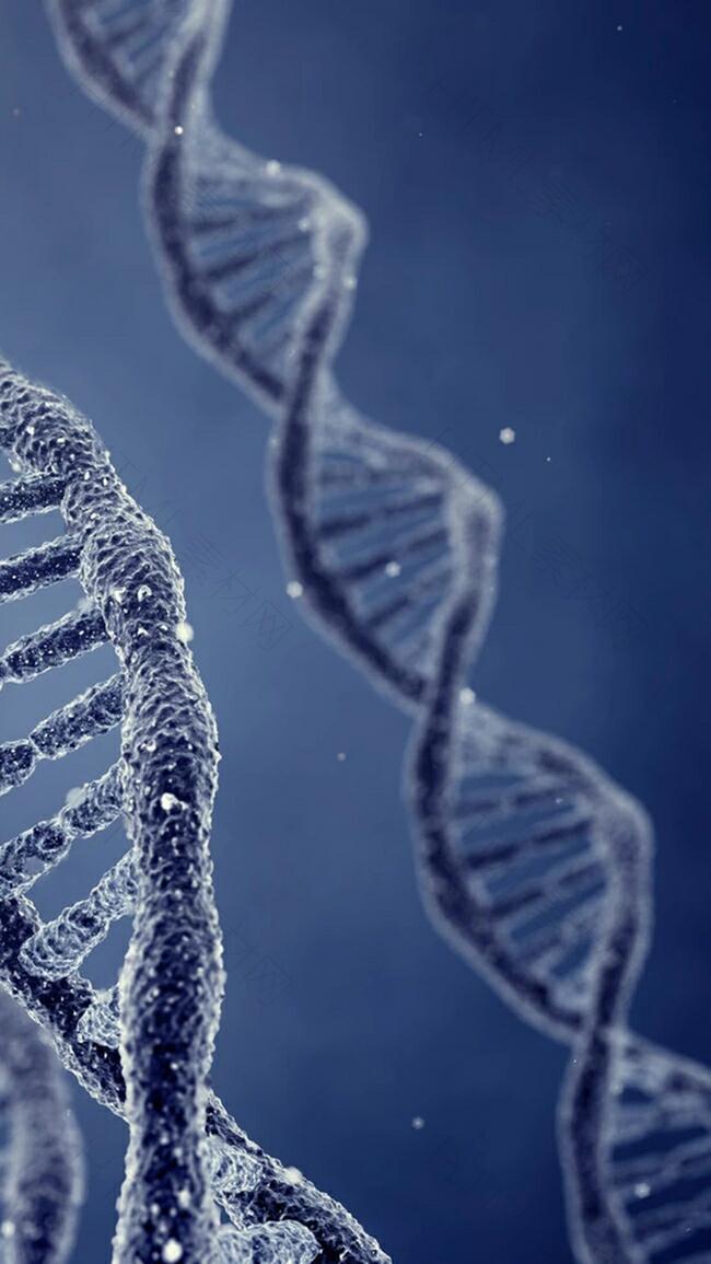 蓝色写实感DNA结构图H5背景元素