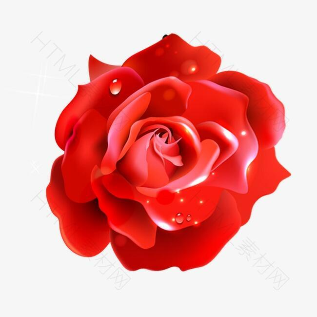 情人节婚礼浪漫蜡质玫瑰