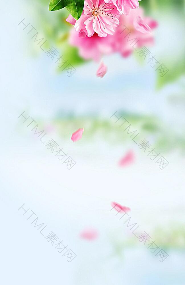 花朵清新H5背景
