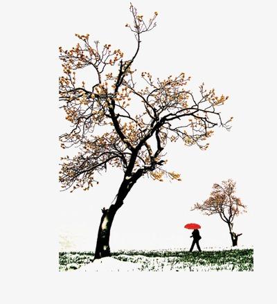 花枝漂浮花瓣气泡简洁大方树叶树