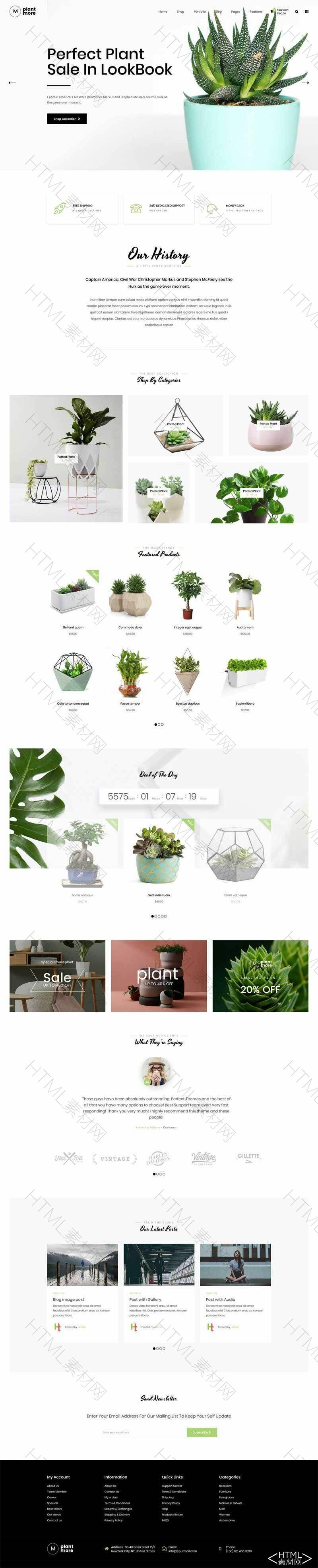 简洁的绿色盆栽植物网上购物商城模板.jpg