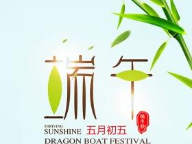 中国风端午节绿色好看海报psd