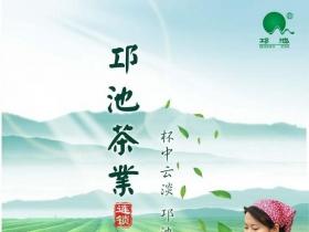 绿色环保茶叶宣传海报