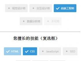 jQuery单选框跟复选框美化代码演示
