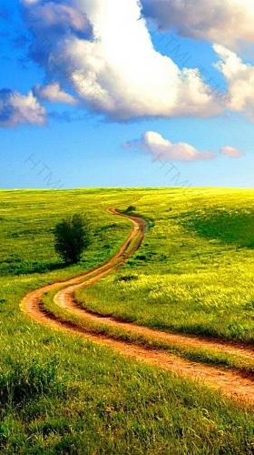 草原H5素材背景